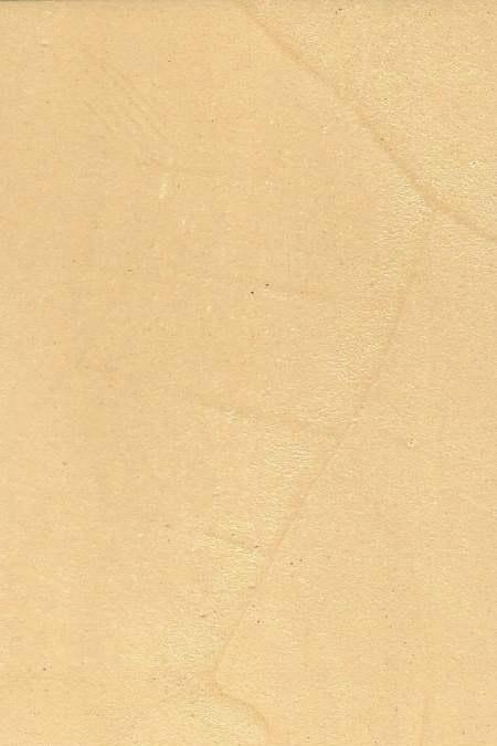 Satine-D2020Y20R
