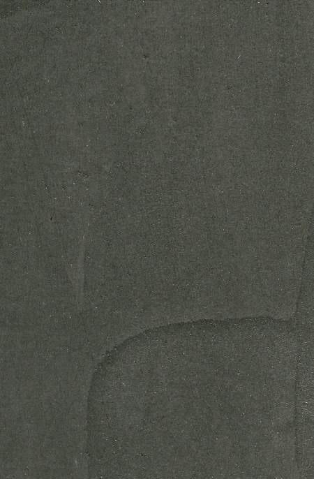 satine-D6000N